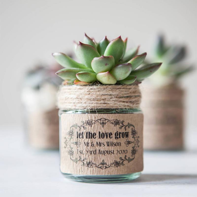 Cam Kavanozda Çiçek Fidanı Nişan Düğün Hediyesi